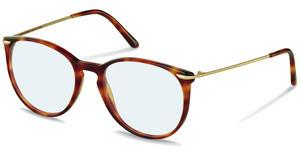 Claudia Schiffer C4009 C light havana