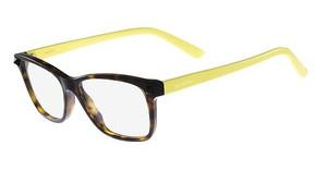 Valentino V2694 203 DARK HAVANA-YELLOW