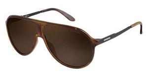 Carrera NEW CHAMPION 8F8/SP BRONZE PZHVNA BLCK