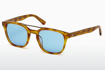 Sonnenbrille Web Eyewear WE0166 A53 - Havanna, Yellow, Blond, Brown