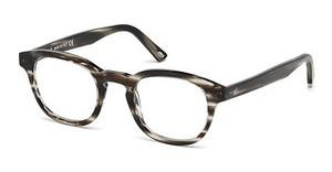 Web Eyewear WE5203 020 grau