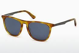 Lunettes de soleil Web Eyewear WE0160 53V - Havanna, Yellow, Blond, Brown
