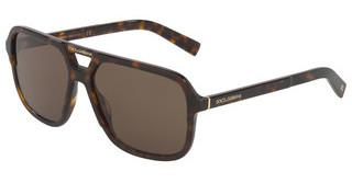 Dolce & Gabbana DG4354 502/73 BROWN GRADIENT DARK BROWNHAVANA