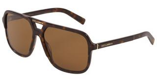 Dolce & Gabbana DG4354 502/83 DARK BROWN - POLAR (CR39)HAVANA